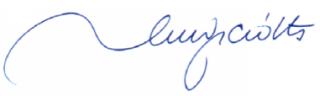 Firma Luigi